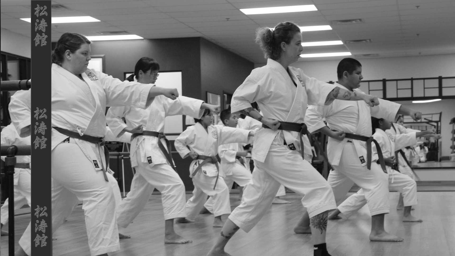 Nevada Shotokan Karate